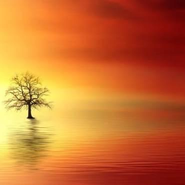 sunset-3156440_640.jpg
