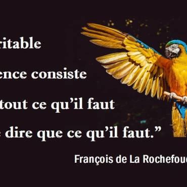 larochefoucault_eloquence.jpg