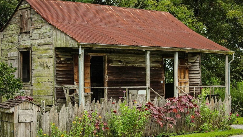 Naissance d'une Société de Plantation : la Louisiane